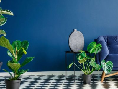 Bringing Greenery to your fitout